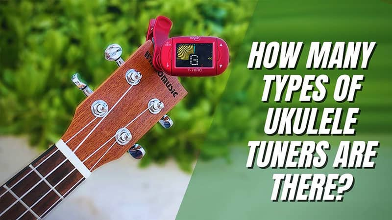 How Many Types Of Ukulele Tuners Are There