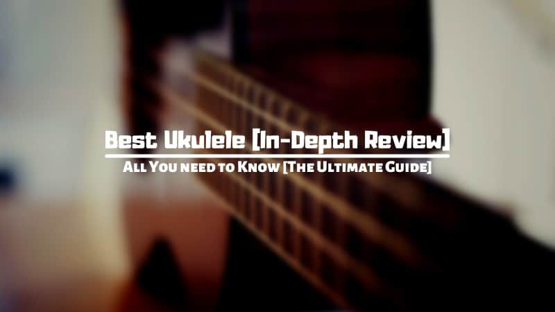 Best Ukuleles of 2021 [The Entire Ukulele Handbook: How to Play, What You Need and More]